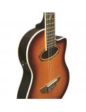 chitarra classica elettrificata eko